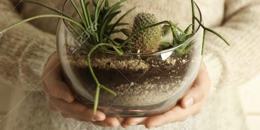 Planting Intentions and Terrarium Making Workshop