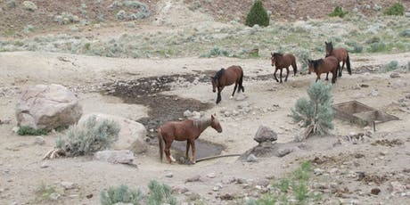 Horse Rich & Dirt Poor: The challenge to healthy Nevada Lands, wildlife and wild horses. tickets