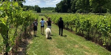 Vineyard and Winery Tour + Barrel Tasting with Shelby Township Gardeners Club tickets