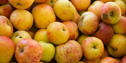 Cider Making Class Oct.2nd