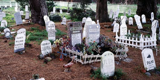 Volunteer at Presidio Pet Cemetery
