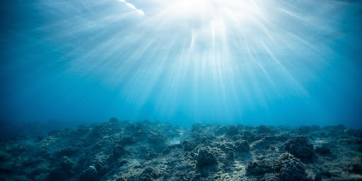 Immersion Sensorielle Earthship Sisters - Bonifacio Après Midi