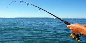 Saltwater Fishing 101: Buying the Right Rod and Reel