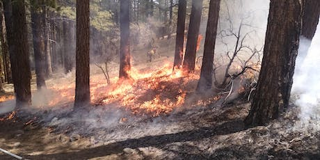 Nevada Prescribed Fire Alliance 2nd Annual Fall Meeting tickets