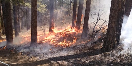 Nevada Prescribed Fire Alliance 2nd Annual Fall Meeting