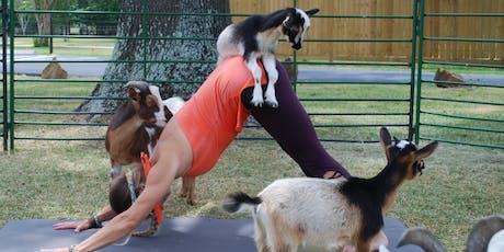 HALLOWEEN Goat Yoga! - Thurs, Oct 31 @ 6pm tickets