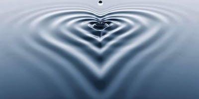 As emoções e a inteligência do coração