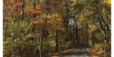 Annual Autumn Yoga & Hike (includes Vegetarian Lunch)