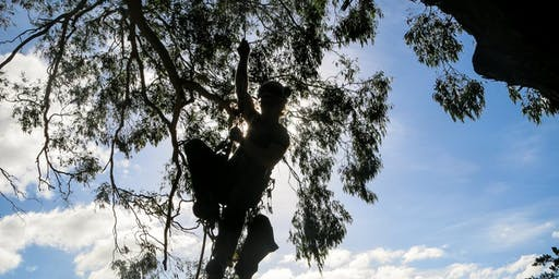SRT Work (intermediate) For Climbers
