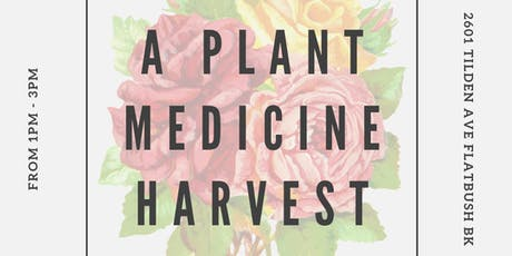 A Plant Medicine Harvest tickets
