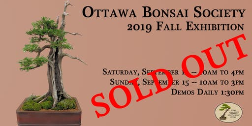 Bonsai Art Exhibition