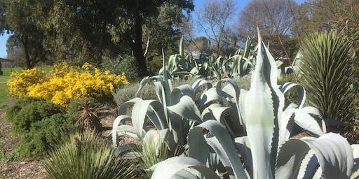 Marangy Open Garden Benalla