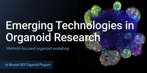 Emerging Technologies in Organoid Research