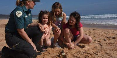 Junior Rangers Tread Lightly, Hoodies Nesting - Mornington Peninsula NP