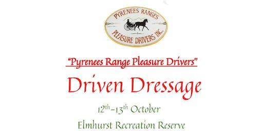 Driven Dressage Qualifier