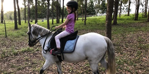 45min Individual Holiday Horse Experience (5yrs+)