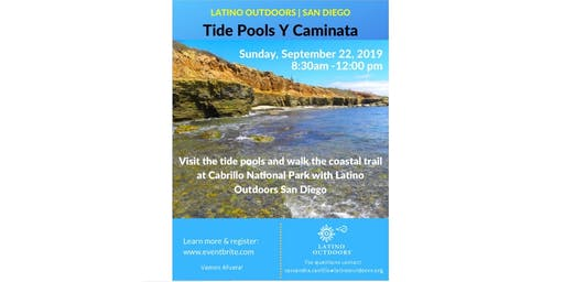 Tide Pools Y Caminta En Cabrillo National Park