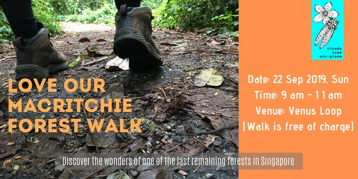 Love Our MacRitchie Forest Walk
