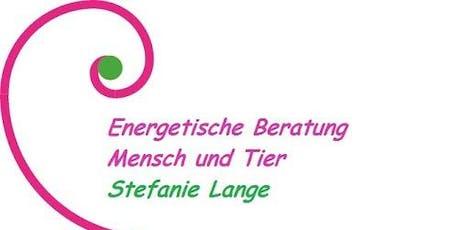 Energetische Gesprächsrunde Tickets