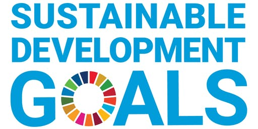 SDG17 PARTNERSHIPS FOR THE GOALS