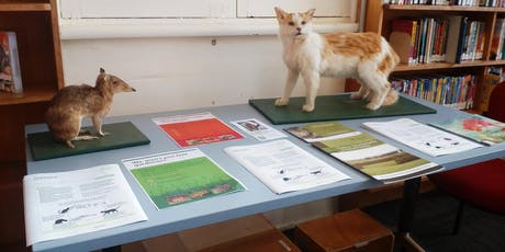 Cats & Wildlife @ Deloraine Library tickets