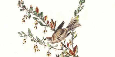 Talk: Listening to birds: experiencing time, place and season through sound tickets