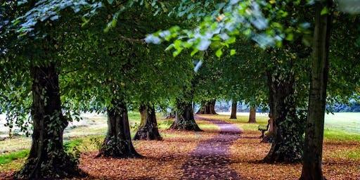 Hidden Footpaths Walk