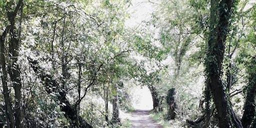 Walk from East Grinstead to Groombridge