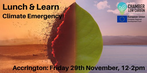 Low Carbon Lunch and Learn - Climate Emergency with Electricity North West