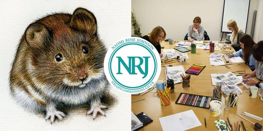 Art Workshop: Draw a Wood Mouse!
