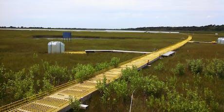 Carbon Cycling in Coastal Wetlands Teacher Workshop tickets