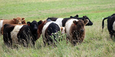 Tangible Advantages of Managing Grazing for Soil Health: A Pasture Walk tickets
