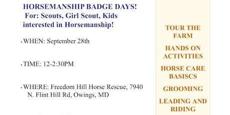 Horsemanship Badge Days tickets