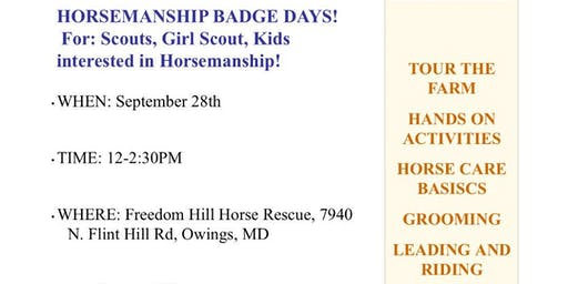 Horsemanship Badge Days