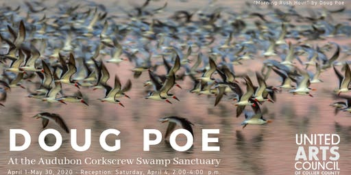 Opening Reception for Doug Poe: Exhibit at the Audubon