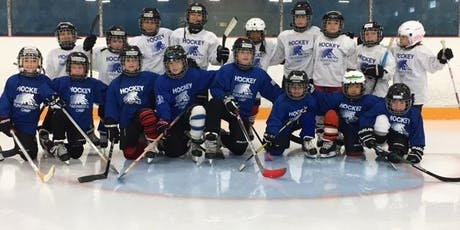 Christmas hockey camp (Toronto): December 30- 31/19 & January 2-3/20 (4 days) tickets