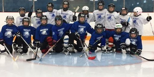 Christmas hockey camp (Toronto): December 30- 31/19 & January 2-3/20 (4 days)