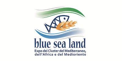 Presentazione Blue Sea Land 2019 - Expo dei cluster del Mediterraneo, dell'Africa e del Medioriente