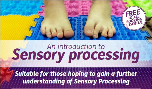 An Introduction to Sensory Processing (Evening)