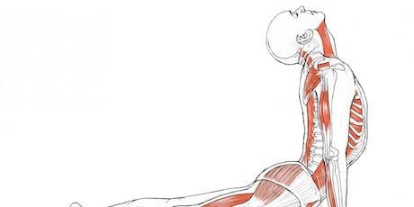 Introduction to Yoga Anatomy w/ John Luna-Sparks tickets