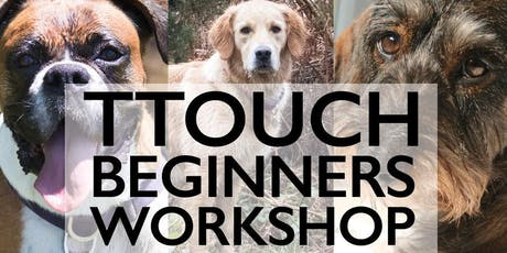 Tellington TTouch Beginners Morning Workshop tickets