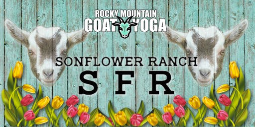 Goat Yoga - October 13th (SonFlower Ranch Fall Festival)