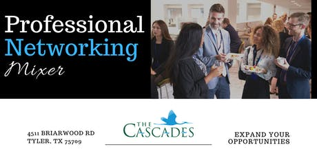 Professional Networking Mixer tickets