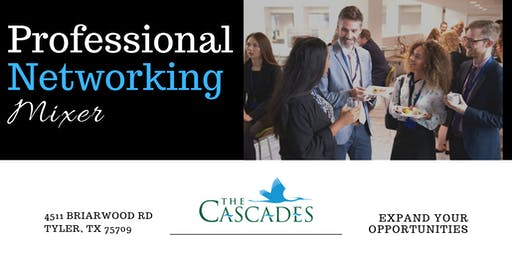 Professional Networking Mixer