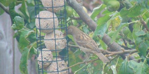 Bird Food Decoration Making Marden Quarry