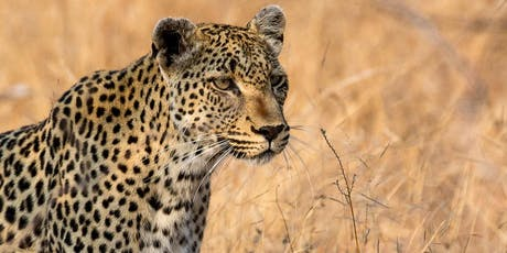 African Safaris & Responsible Tourism tickets