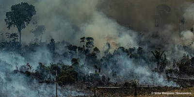 Scorched Earth: Culture and Climate Under Siege