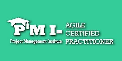 PMI-ACP (PMI Agile Certified Practitioner) Training in Pierre, SD