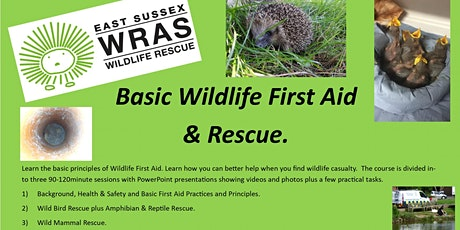 Basic Wildlife First Aid & Rescue - Full Day Course tickets