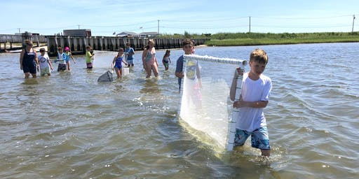 Long Island Marine Habitat Exploration Day
